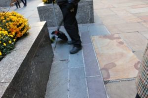 Slip And Fall Accident Lawyer White Plains Banville Law