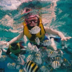snorkeling while on vacation